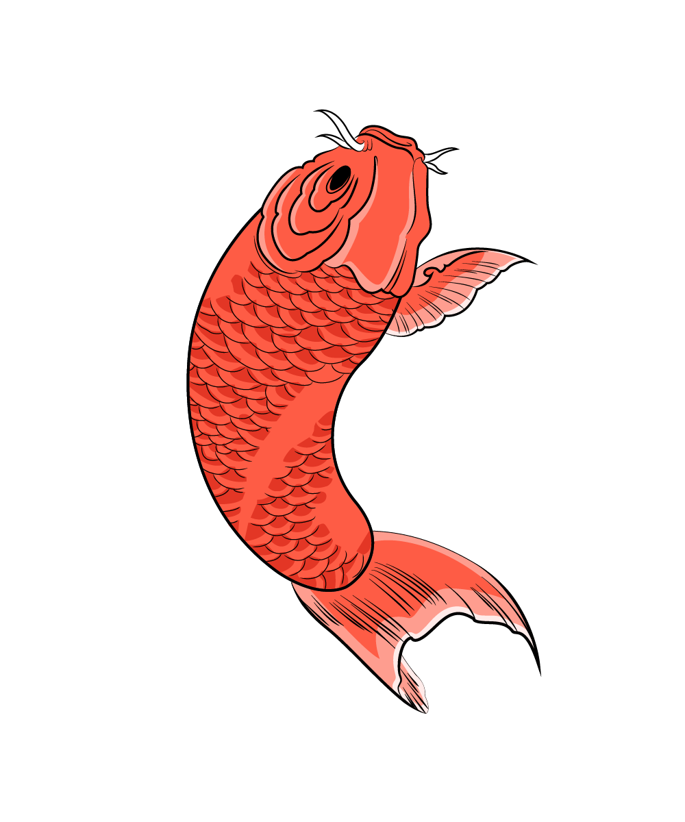 Carpe koi rouge